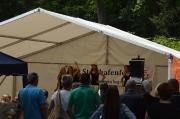 Steinhafenfest 2015_45