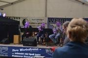 Steinhafenfest 2016_73